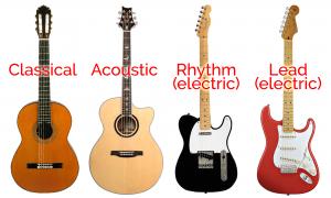 Type of Guitar